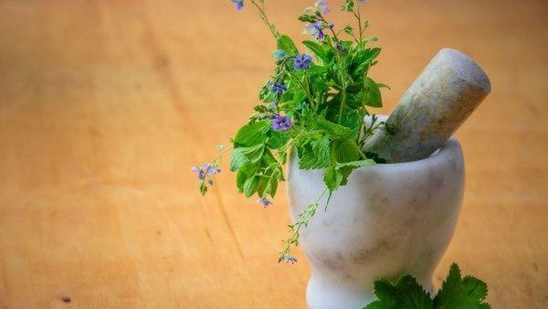 Rhodiola Rosea: propiedades, usos medicinales y contraindicaciones